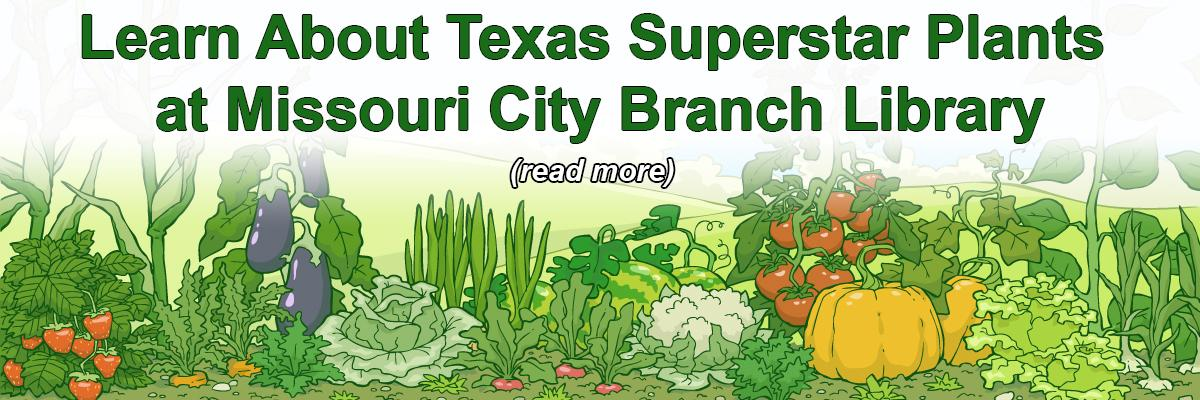 Learn About Texas Superstar Plants at Missouri City Branch Library